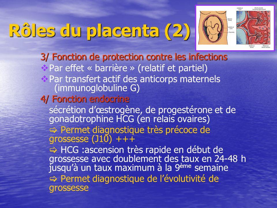 Rôles du placenta (2) 3/ Fonction de protection contre les infections 3/ Fonction de protection contre les infections Par effet « barrière » (relatif