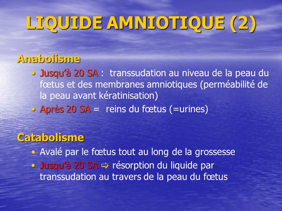LIQUIDE AMNIOTIQUE (2) Anabolisme Jusquà 20 SAJusquà 20 SA : transsudation au niveau de la peau du fœtus et des membranes amniotiques (perméabilité de