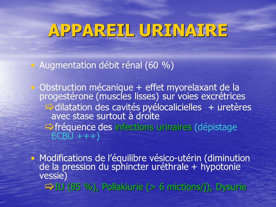 APPAREIL URINAIRE Augmentation débit rénal (60 %) Obstruction mécanique + effet myorelaxant de la progestérone (muscles lisses) sur voies excrétrices