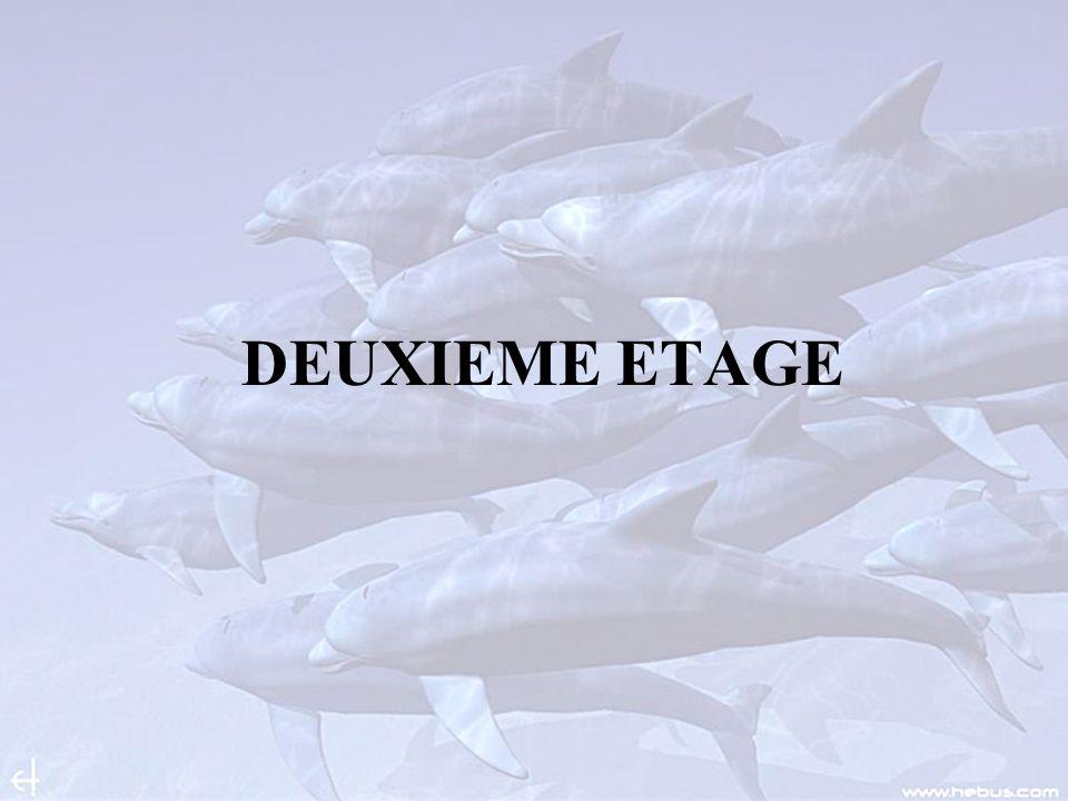 DEUXIEME ETAGE