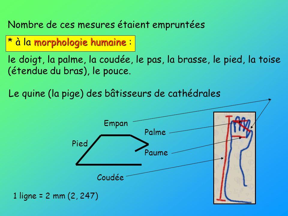 Nombre de ces mesures étaient empruntées morphologie humaine * à la morphologie humaine : le doigt, la palme, la coudée, le pas, la brasse, le pied, l