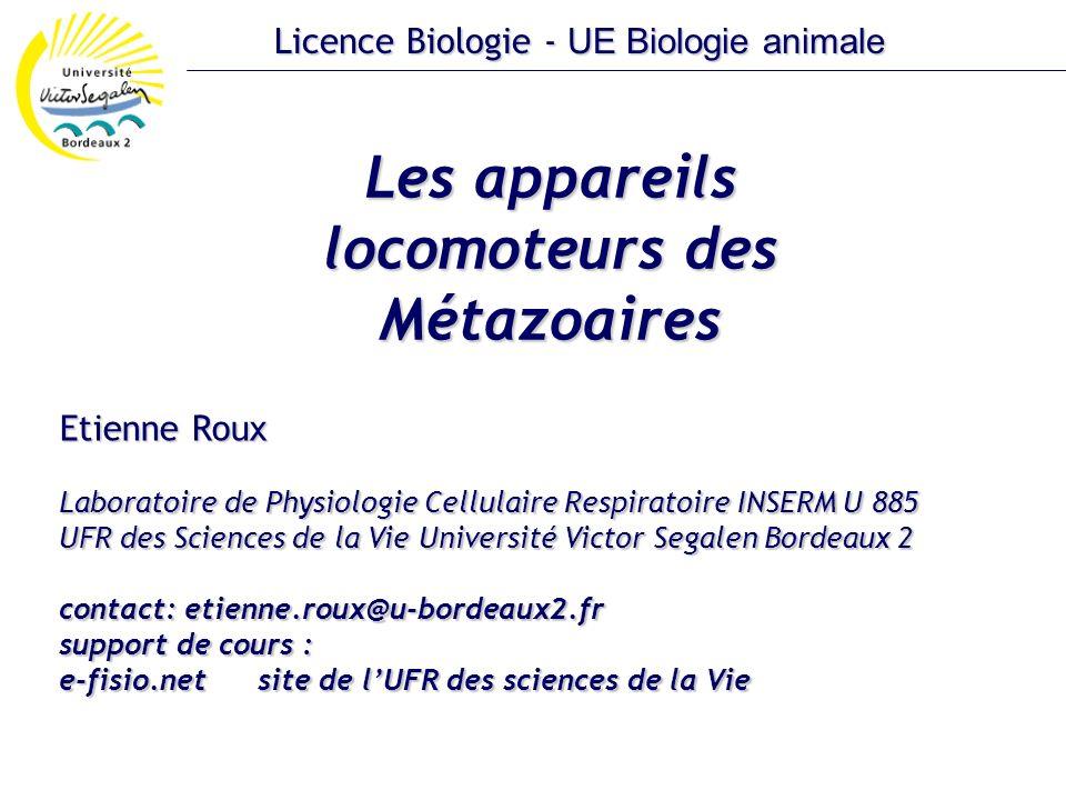 Les appareils locomoteurs des Métazoaires Etienne Roux Laboratoire de Physiologie Cellulaire Respiratoire INSERM U 885 UFR des Sciences de la Vie Univ