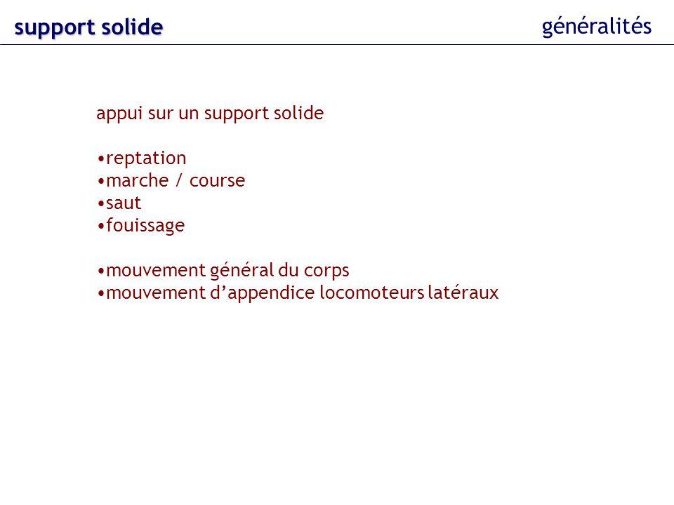 généralités support solide appui sur un support solide reptation marche / course saut fouissage mouvement général du corps mouvement dappendice locomo