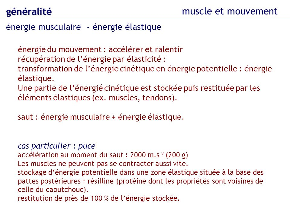 muscle et mouvement généralité énergie musculaire - énergie élastique énergie du mouvement : accélérer et ralentir récupération de lénergie par élasti