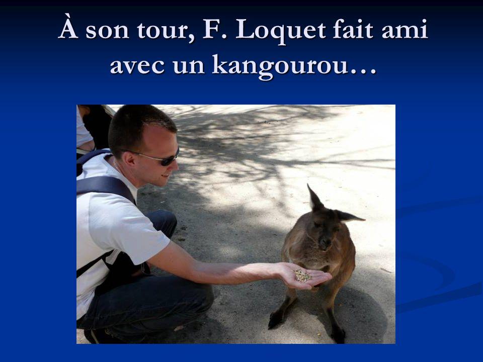 À son tour, F. Loquet fait ami avec un kangourou…