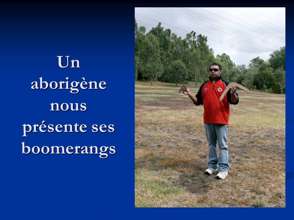 Un aborigène nous présente ses boomerangs