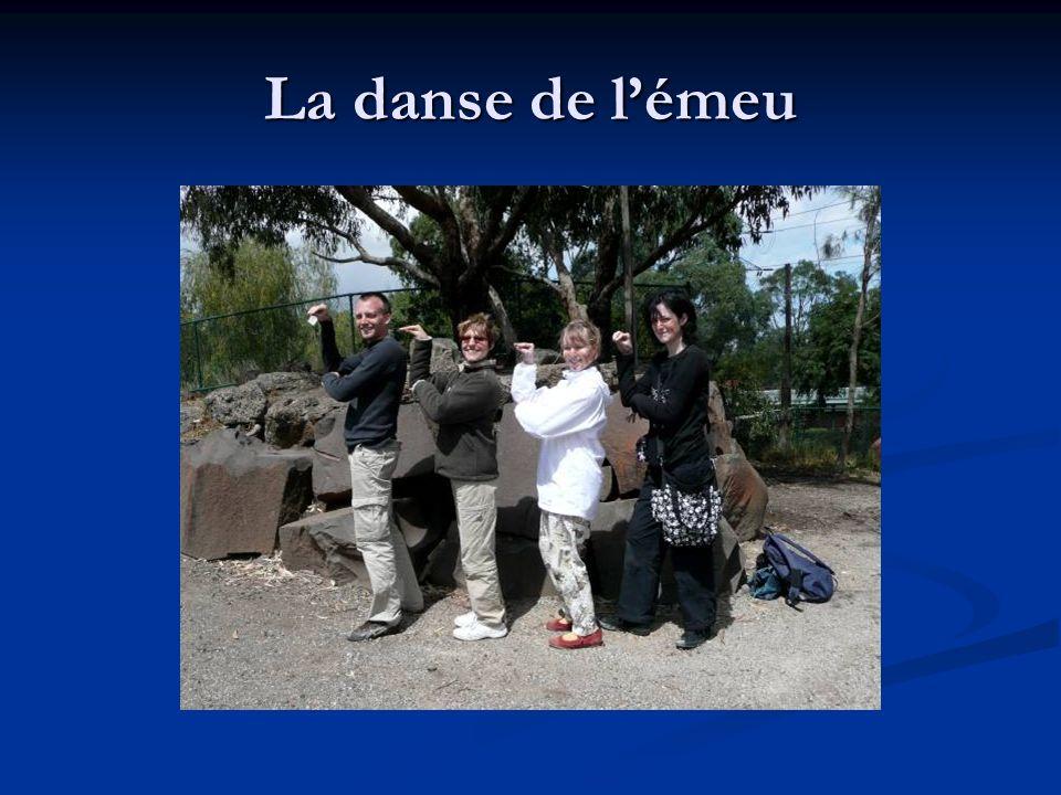 La danse de lémeu