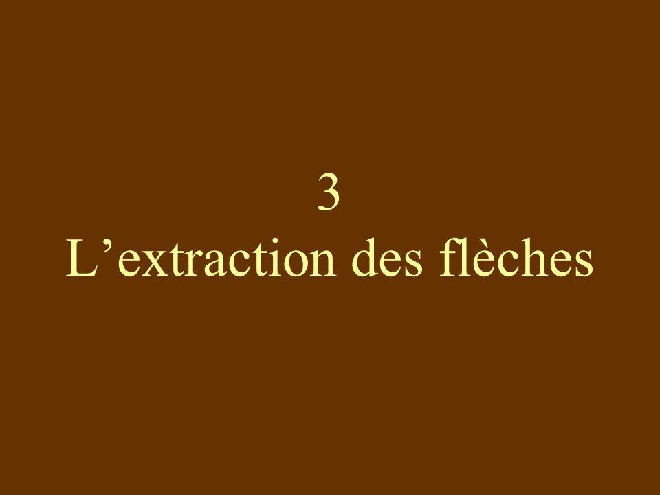 3 Lextraction des flèches