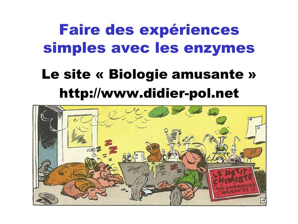 Faire des expériences simples avec les enzymes Le site « Biologie amusante » http://www.didier-pol.net