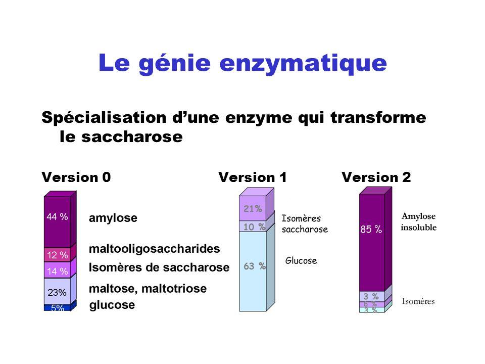 Le génie enzymatique Spécialisation dune enzyme qui transforme le saccharose Version 0 Version 1 Version 2