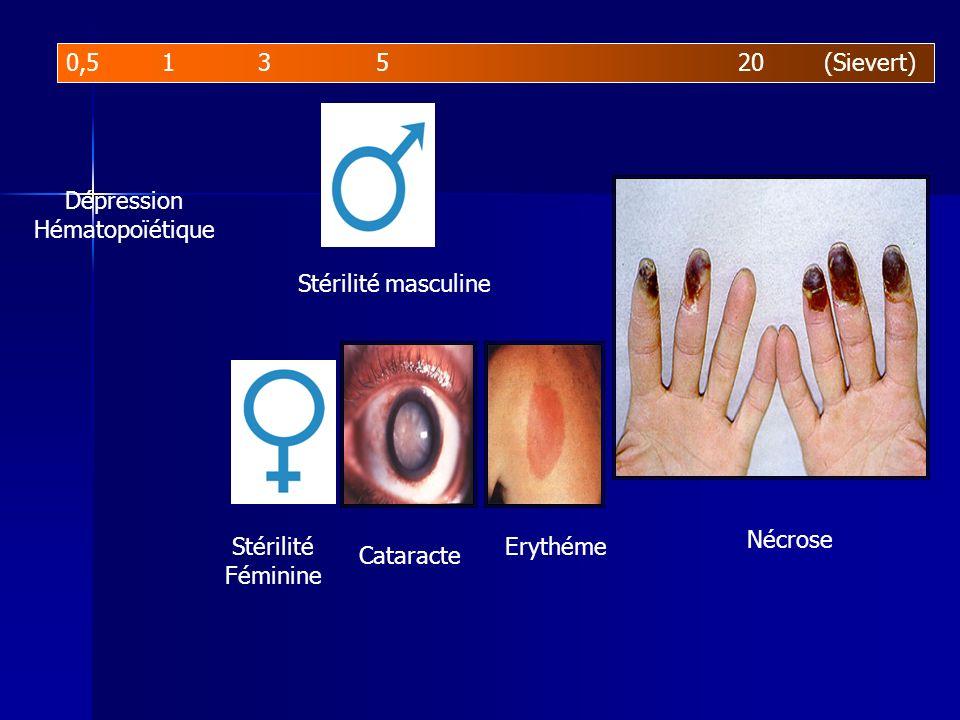 0,513 520 (Sievert) Stérilité masculine Dépression Hématopoïétique Stérilité Féminine Cataracte Erythéme Nécrose