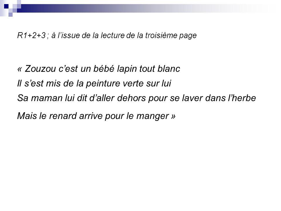 R1+2+3 ; à lissue de la lecture de la troisième page « Zouzou cest un bébé lapin tout blanc Il sest mis de la peinture verte sur lui Sa maman lui dit