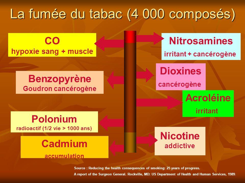 La fumée du tabac (4 000 composés) Nitrosamines irritant + cancérogène CO hypoxie sang + muscle Cadmium accumulation Benzopyrène Goudron cancérogène N