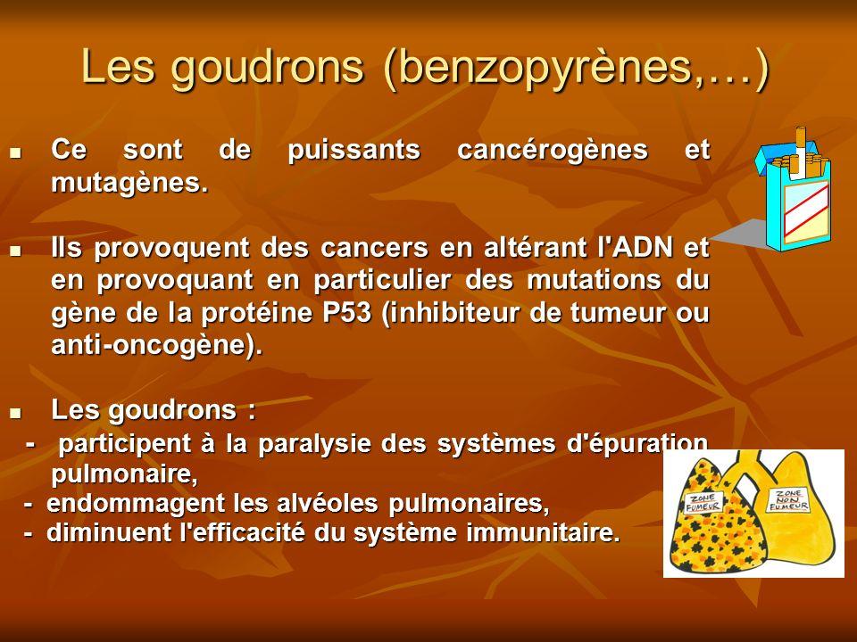 Les goudrons (benzopyrènes,…) Ce sont de puissants cancérogènes et mutagènes. Ce sont de puissants cancérogènes et mutagènes. Ils provoquent des cance