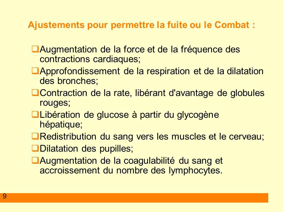 9 Ajustements pour permettre la fuite ou le Combat : Augmentation de la force et de la fréquence des contractions cardiaques; Approfondissement de la
