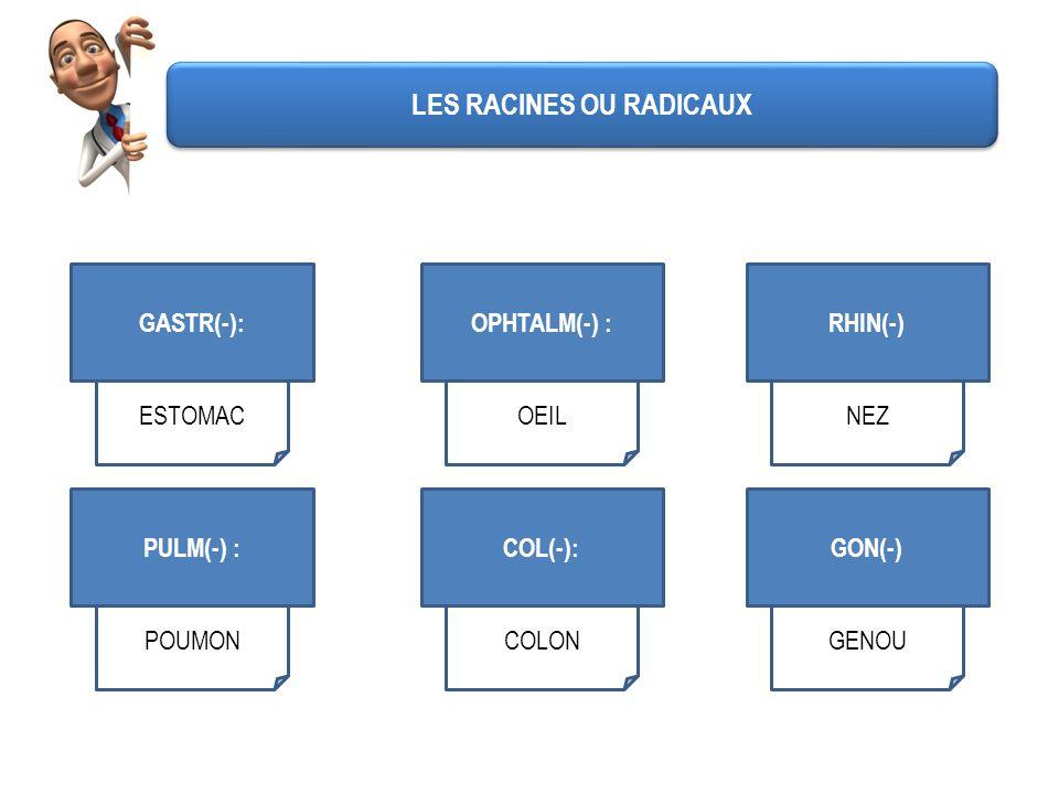 GASTR(-): ESTOMAC OPHTALM(-) : OEIL RHIN(-) NEZ PULM(-) : POUMON COL(-): COLON GON(-) GENOU LES RACINES OU RADICAUX