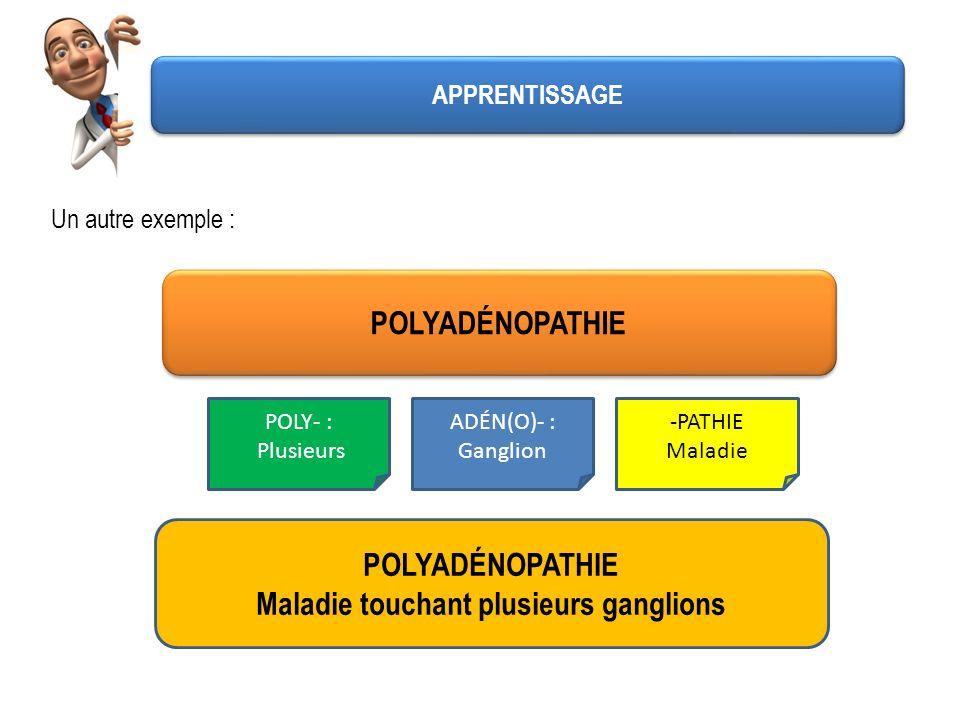 Un autre exemple : POLYADÉNOPATHIE POLY- : Plusieurs ADÉN(O)- : Ganglion -PATHIE Maladie POLYADÉNOPATHIE Maladie touchant plusieurs ganglions APPRENTI
