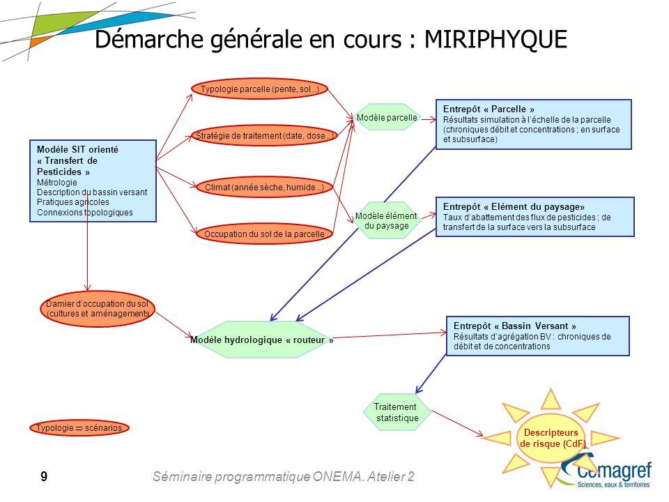 9 Séminaire programmatique ONEMA. Atelier 2 Démarche générale en cours : MIRIPHYQUE Modèle SIT orienté « Transfert de Pesticides » Métrologie Descript