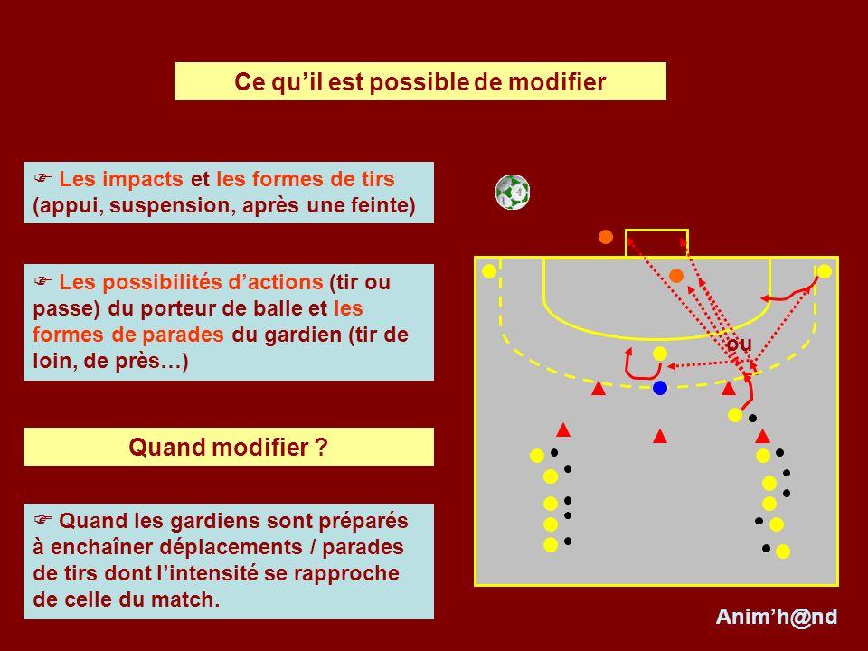 Les impacts et les formes de tirs (appui, suspension, après une feinte) Les possibilités dactions (tir ou passe) du porteur de balle et les formes de parades du gardien (tir de loin, de près…) ou Quand modifier .