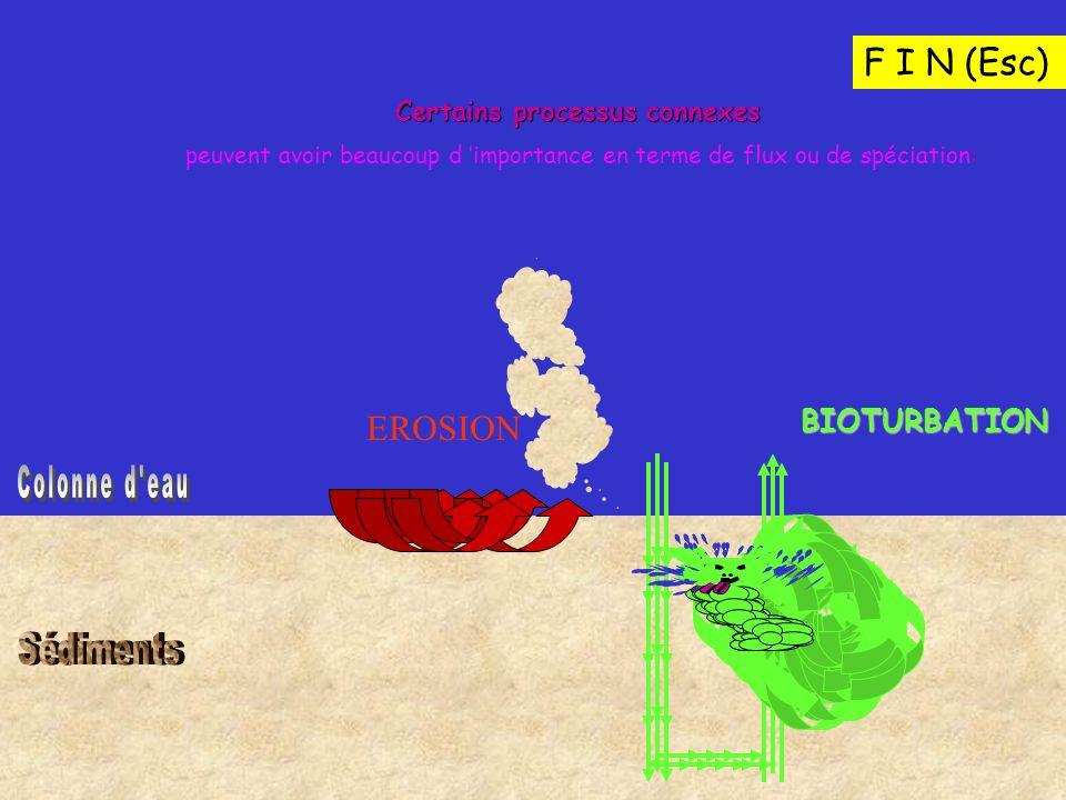Certains processus connexes peuvent avoir beaucoup d importance en terme de flux ou de spéciation: EROSION BIOTURBATION F I N (Esc)
