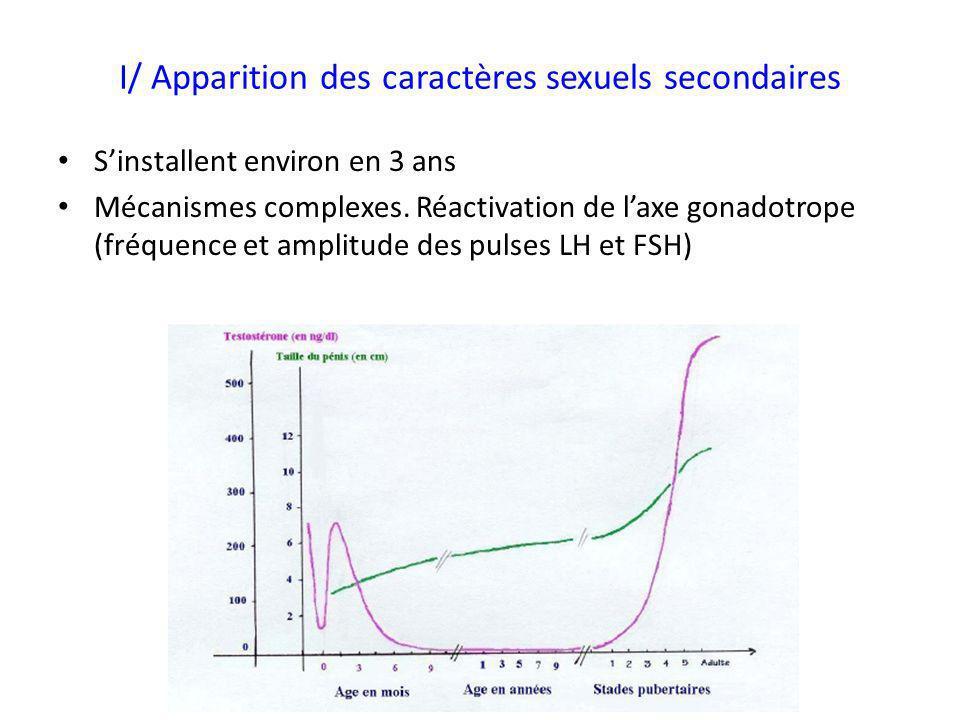 I/ Apparition des caractères sexuels secondaires Sinstallent environ en 3 ans Mécanismes complexes. Réactivation de laxe gonadotrope (fréquence et amp