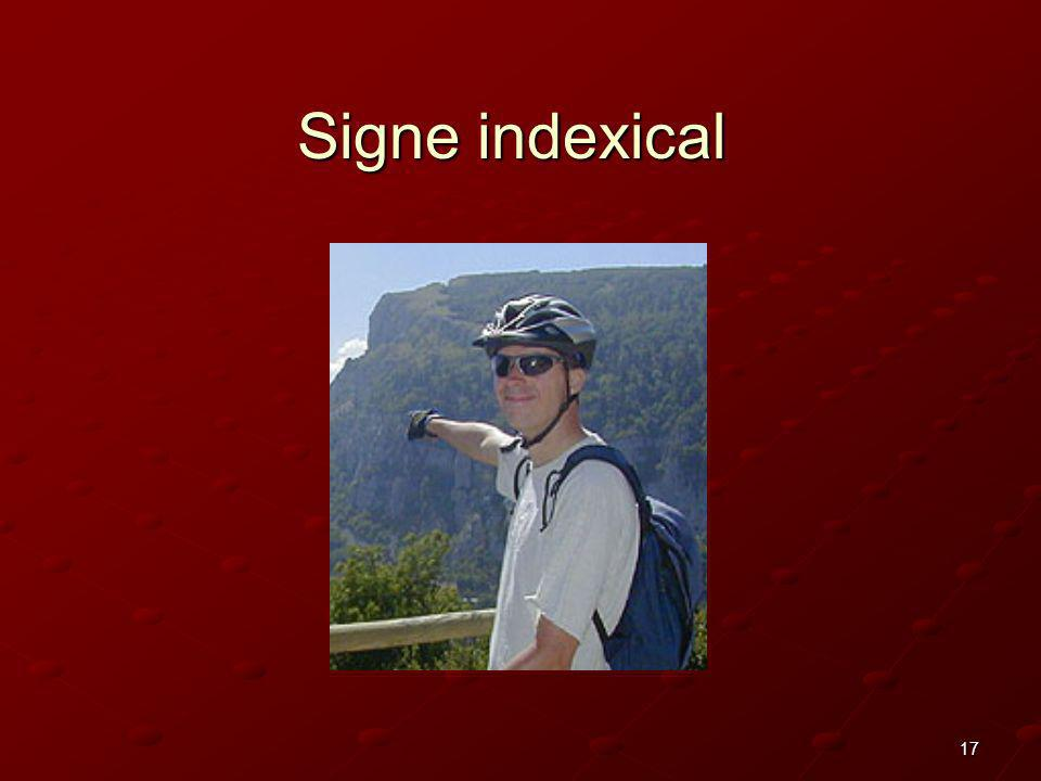 17 Signe indexical