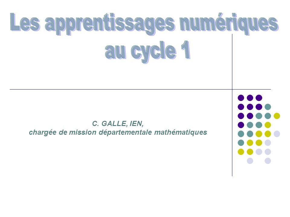 C. GALLE, IEN, chargée de mission départementale mathématiques