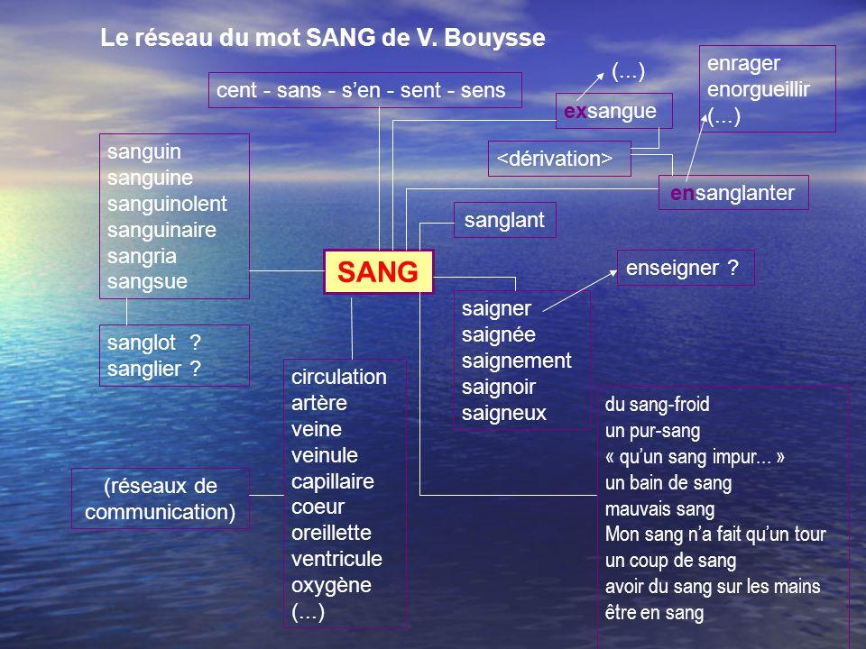 Le réseau du mot SANG de V.