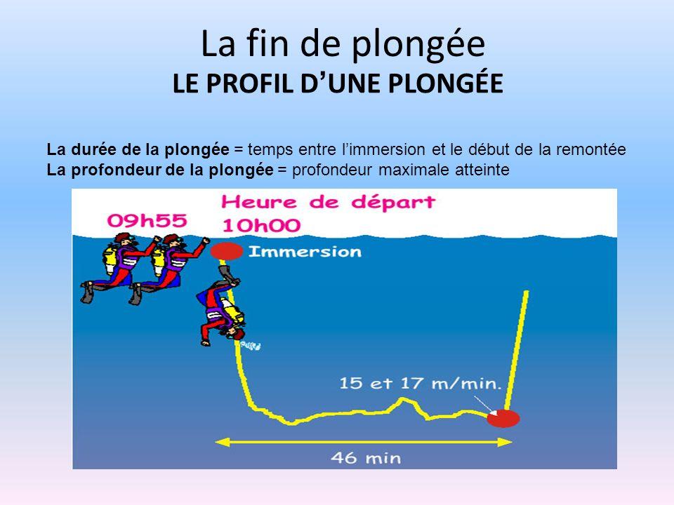 LE PROFIL DUNE PLONGÉE La durée de la plongée = temps entre limmersion et le début de la remontée La profondeur de la plongée = profondeur maximale at