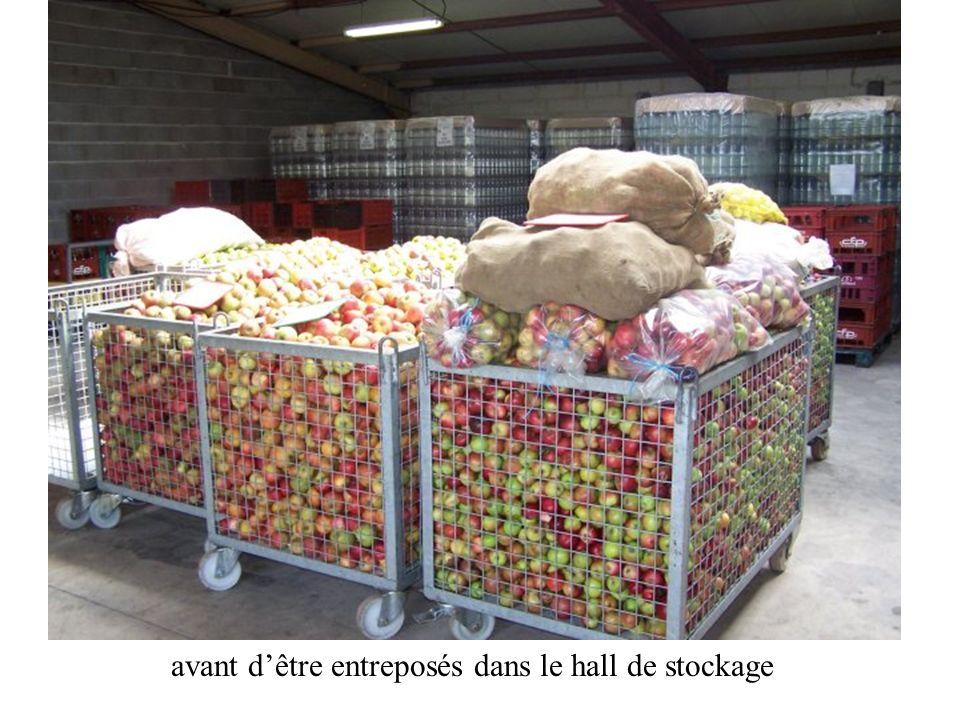 Les fruits sont pesés à laide dune balance électronique