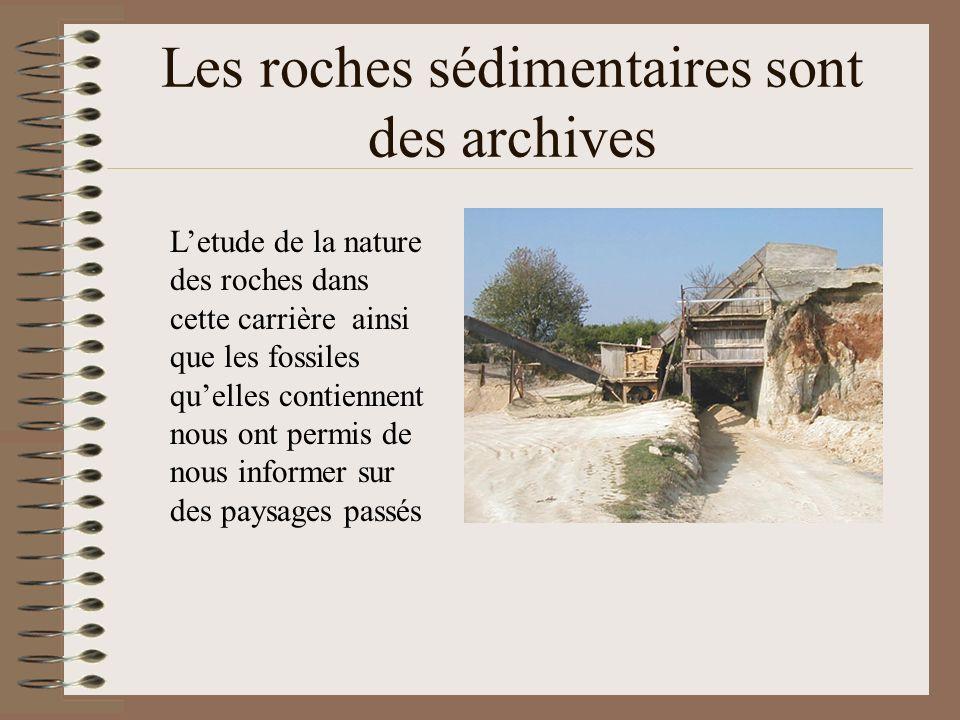 Les roches sédimentaires sont des archives Letude de la nature des roches dans cette carrière ainsi que les fossiles quelles contiennent nous ont perm