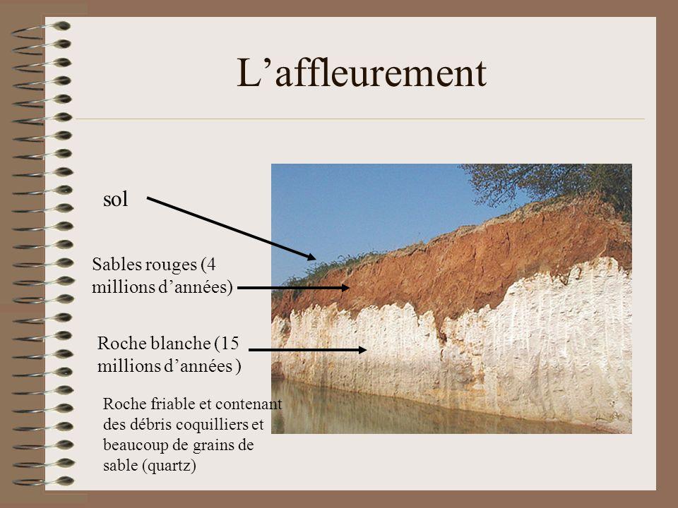 Laffleurement Sables rouges (4 millions dannées) Roche blanche (15 millions dannées ) sol Roche friable et contenant des débris coquilliers et beaucou