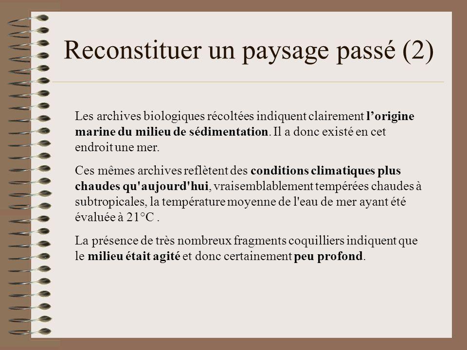 Reconstituer un paysage passé (2) Les archives biologiques récoltées indiquent clairement lorigine marine du milieu de sédimentation. Il a donc existé
