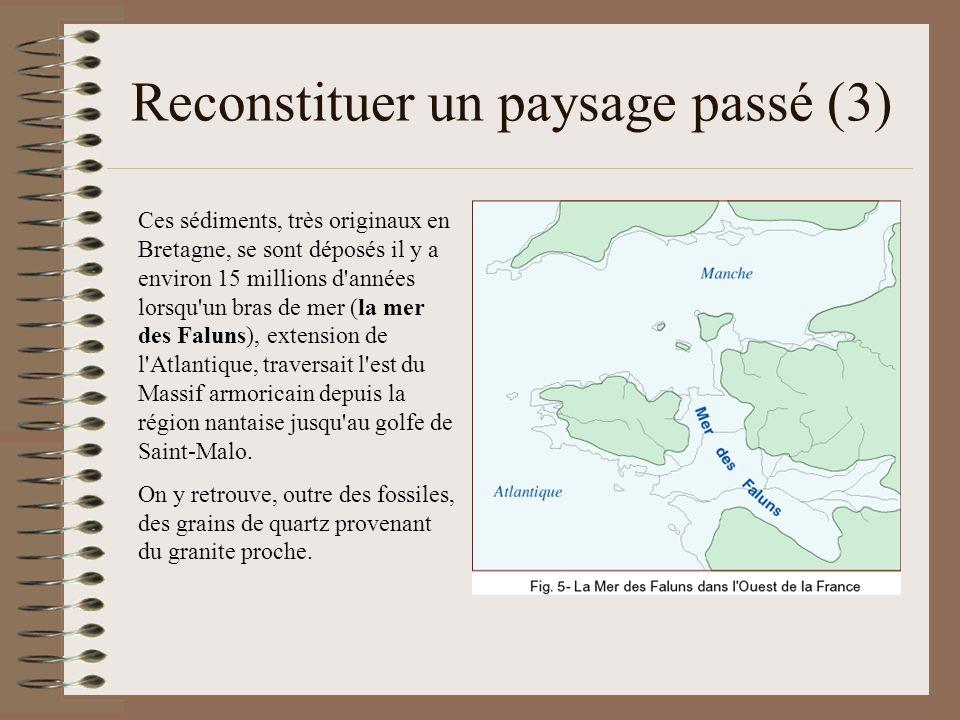 Reconstituer un paysage passé (3) Ces sédiments, très originaux en Bretagne, se sont déposés il y a environ 15 millions d'années lorsqu'un bras de mer