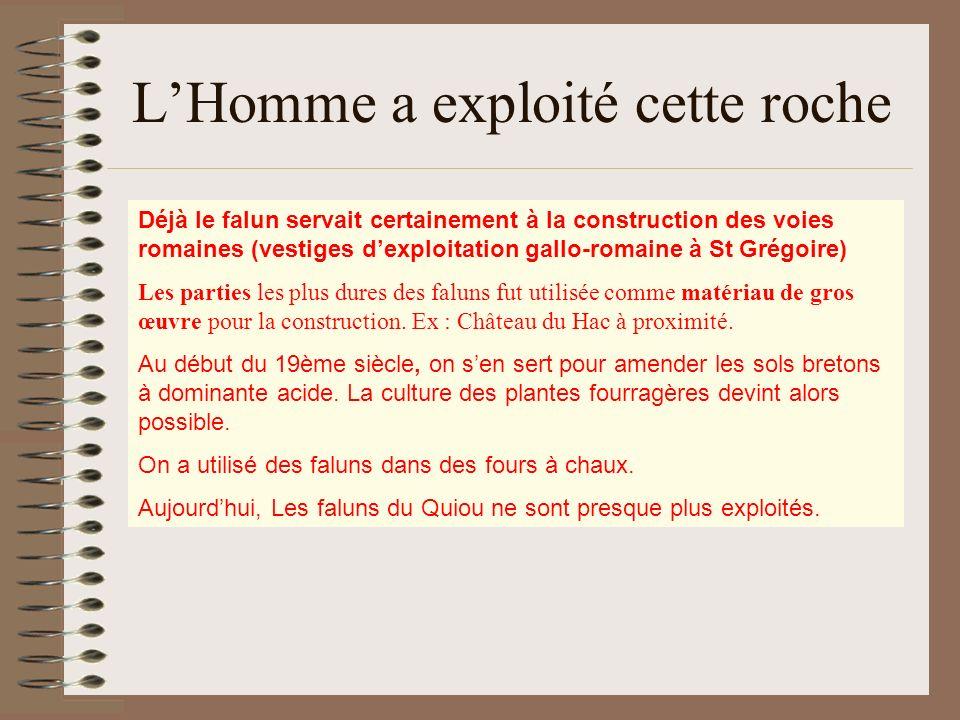 LHomme a exploité cette roche Déjà le falun servait certainement à la construction des voies romaines (vestiges dexploitation gallo-romaine à St Grégo