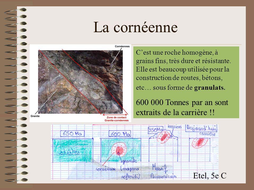 La cornéenne Cest une roche homogène, à grains fins, très dure et résistante. Elle est beaucoup utilisée pour la construction de routes, bétons, etc…