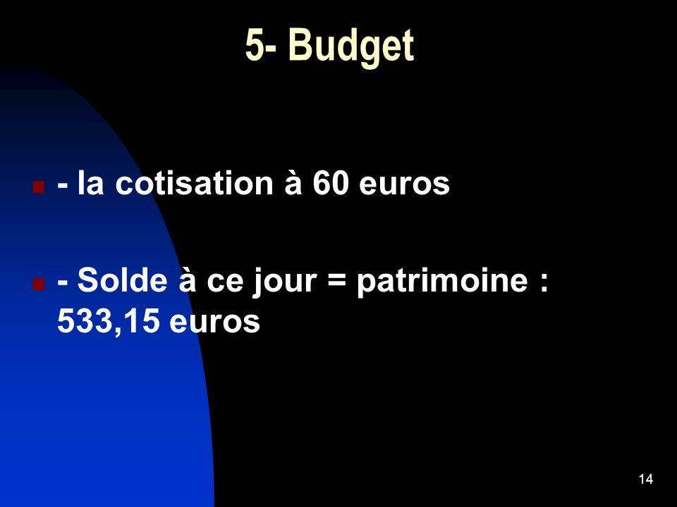 14 5- Budget - la cotisation à 60 euros - Solde à ce jour = patrimoine : 533,15 euros