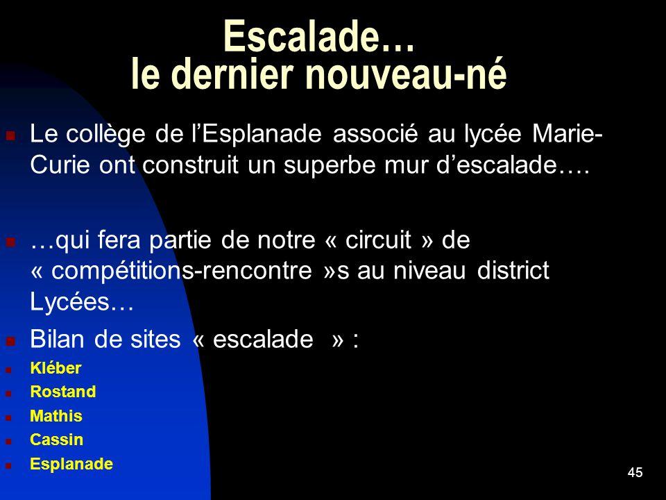 Escalade… le dernier nouveau-né Le collège de lEsplanade associé au lycée Marie- Curie ont construit un superbe mur descalade…. …qui fera partie de no