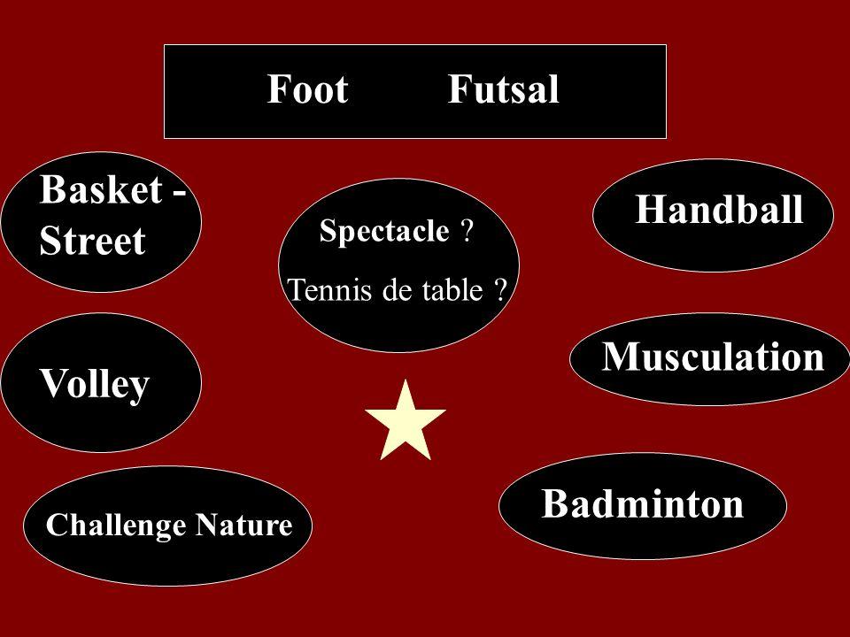 Basket - Street Foot Handball Volley Badminton Futsal Musculation Spectacle ? Tennis de table ? Challenge Nature