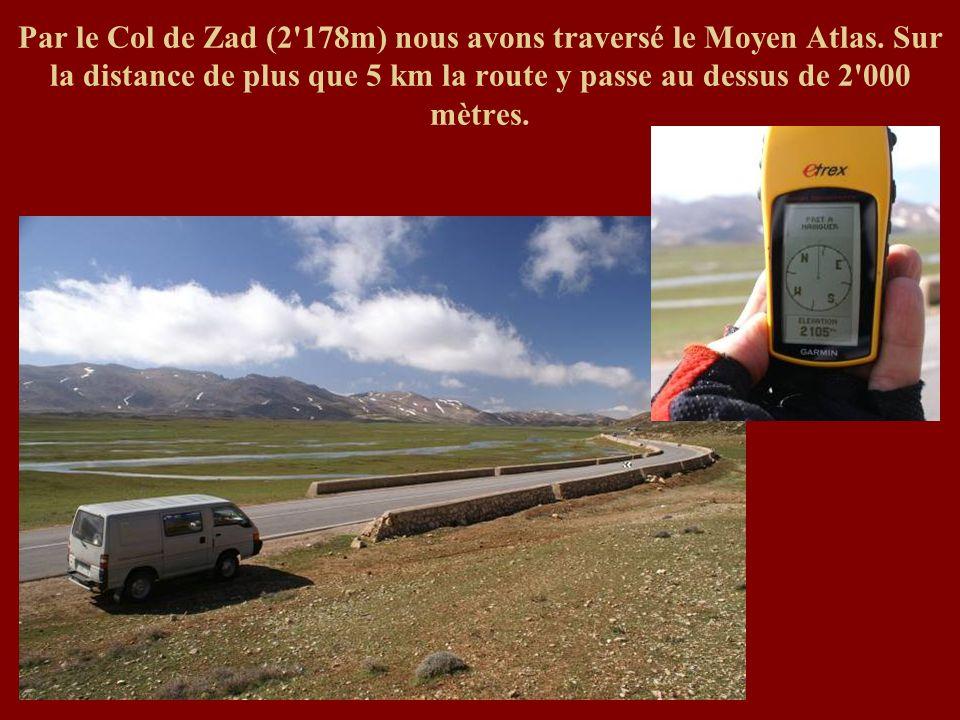 Par le Col de Zad (2'178m) nous avons traversé le Moyen Atlas. Sur la distance de plus que 5 km la route y passe au dessus de 2'000 mètres.