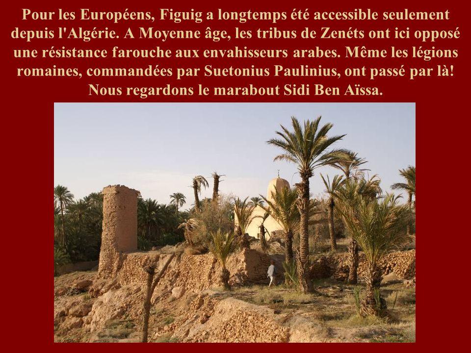Pour les Européens, Figuig a longtemps été accessible seulement depuis l'Algérie. A Moyenne âge, les tribus de Zenéts ont ici opposé une résistance fa