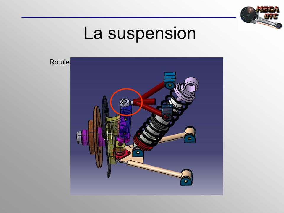La suspension Rotule