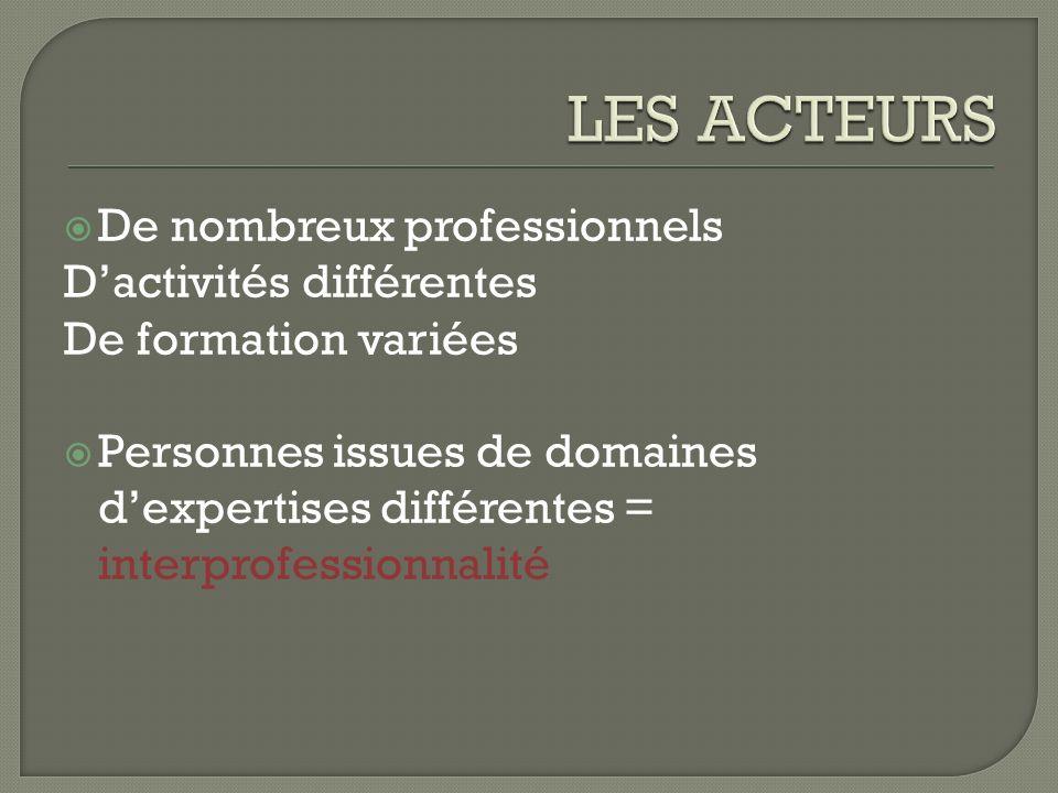 Concept multidimensionnel: Juridique Psychologique Fonctionnel Organisationnel Lorganisation est révélatrice du fonctionnel En pratique sorganise lors de la répartition des taches