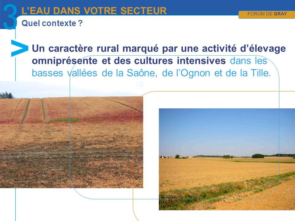 Quel contexte ? Un caractère rural marqué par une activité délevage omniprésente et des cultures intensives dans les basses vallées de la Saône, de lO