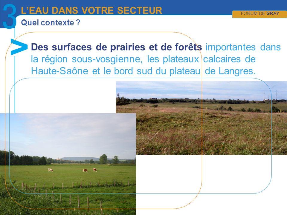 Quel contexte ? LEAU DANS VOTRE SECTEUR FORUM DE GRAY Des surfaces de prairies et de forêts importantes dans la région sous-vosgienne, les plateaux ca