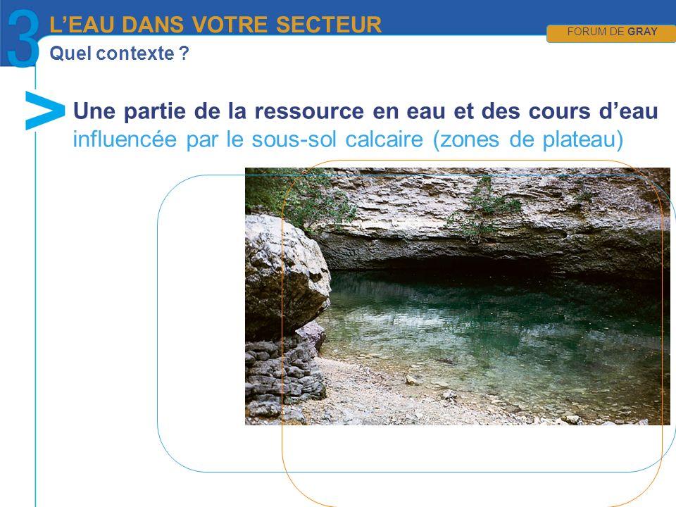 Quel contexte ? Une partie de la ressource en eau et des cours deau influencée par le sous-sol calcaire (zones de plateau) LEAU DANS VOTRE SECTEUR FOR