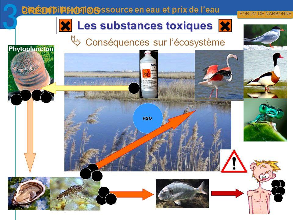 en attente… CRÉDIT PHOTOS FORUM DE NIMES Disponibilité de la ressource en eau et prix de leau FORUM DE NARBONNE Les substances toxiques H2O Conséquenc