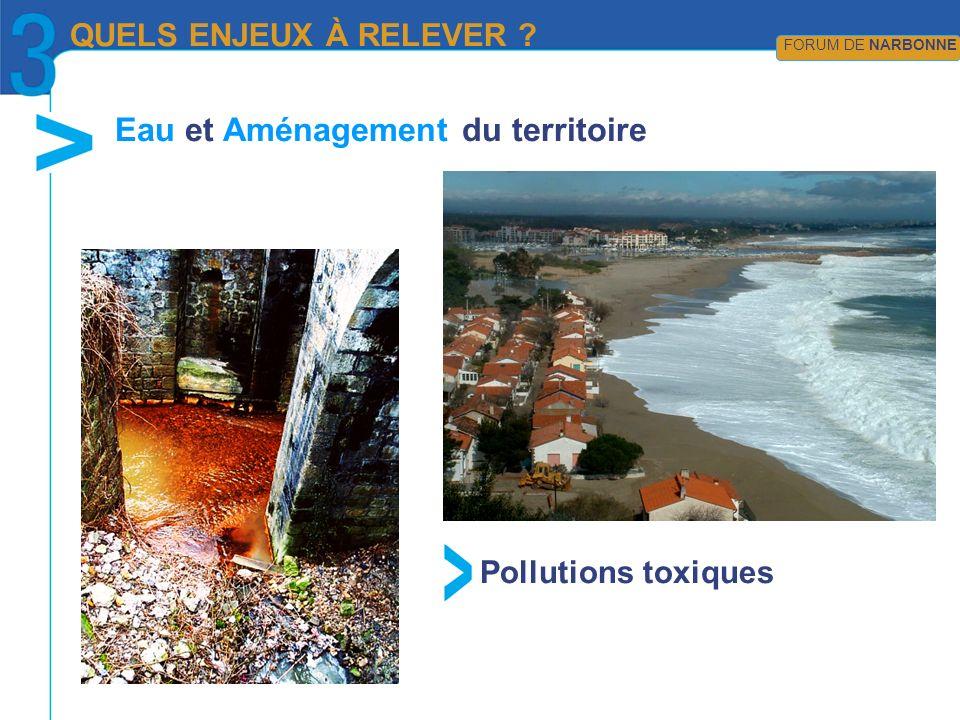 QUELS ENJEUX À RELEVER ? FORUM DE NARBONNE Pollutions toxiques Eau et Aménagement du territoire