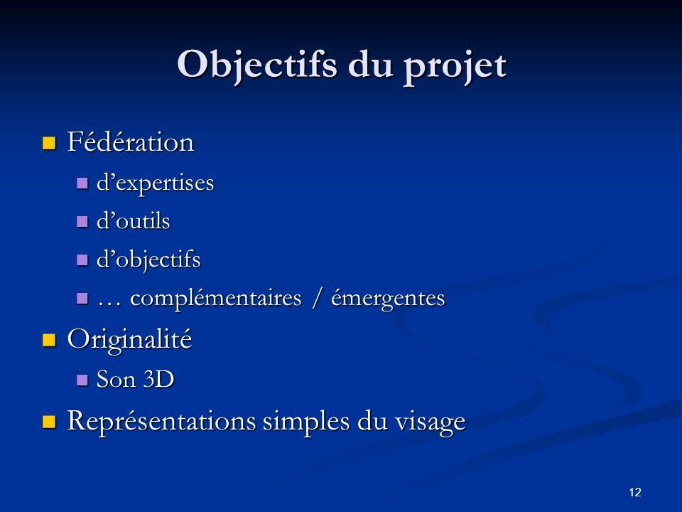 12 Objectifs du projet Fédération Fédération dexpertises dexpertises doutils doutils dobjectifs dobjectifs … complémentaires / émergentes … complément