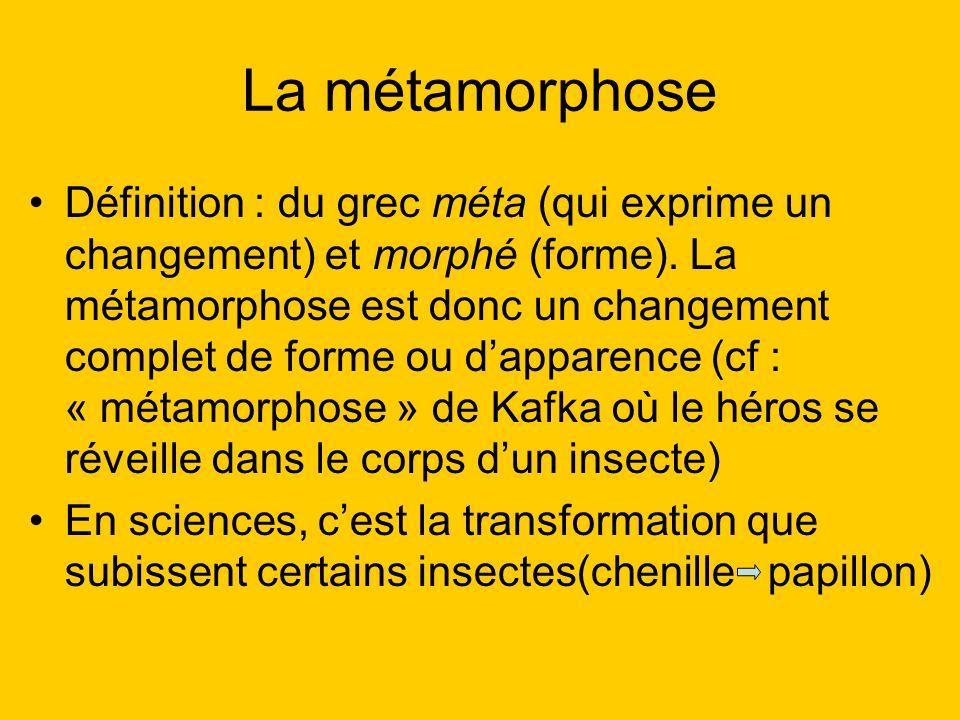 Définition (suite) A lorigine, le terme « métamorphose » était réservé aux changements opérés par les dieux.